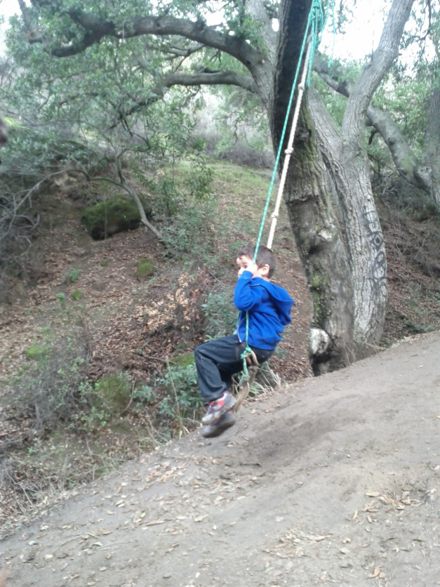 Vanaden Cave Trail - Tree Swing Tuggy