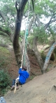 Vanaden Cave Trail - Tree Swing